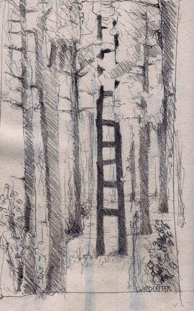 Waldleiter (Innenraum)