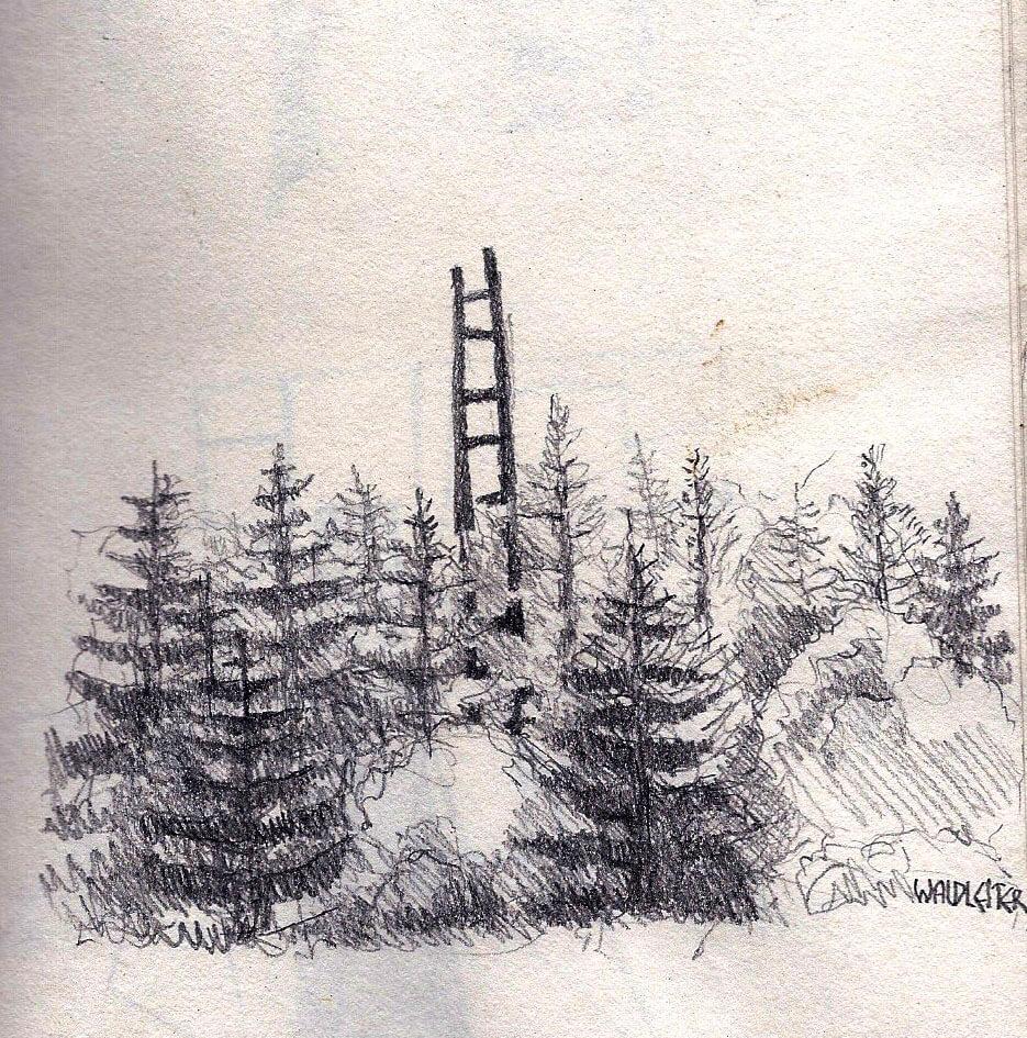 Waldleiter (Aussenraum)